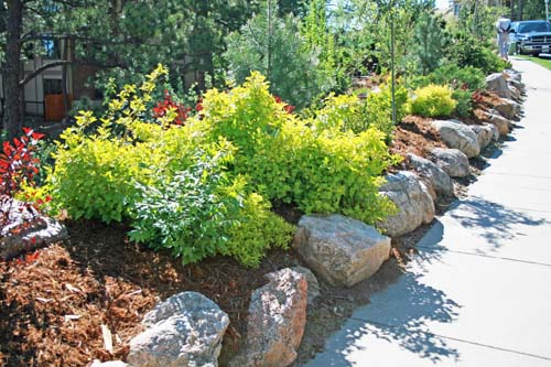 Landscape irrigation design and maintenance in your backyard, in Colorado Springs